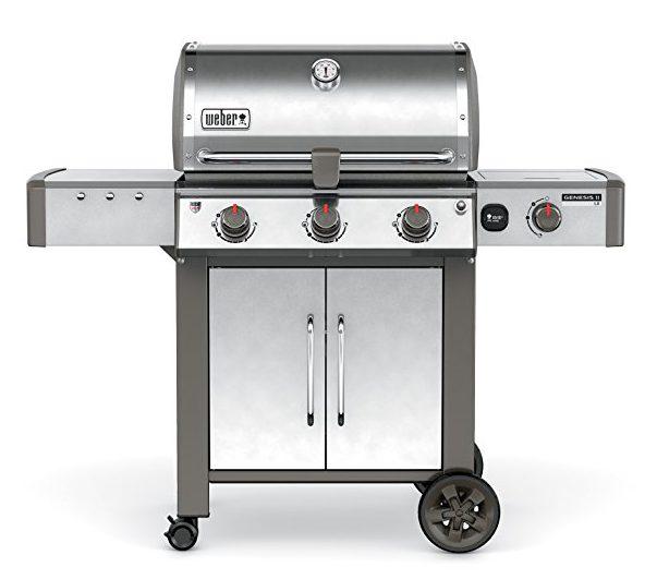 Weber 66004001 Genesis: Best Gas Grills 2017-2018