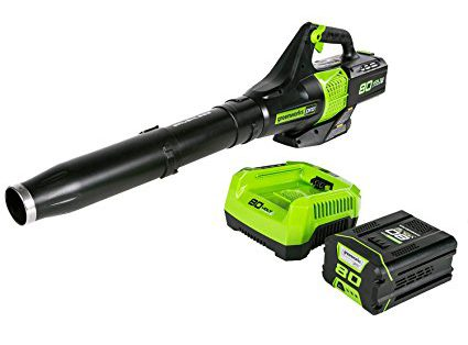 Best Battery Operated Leaf Blowers 2018: Greenworks PRO 80V Jet Blower