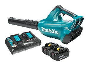 Best Battery Operated Leaf Blowers 2018: Makita XBU02Z 18V X2 LXT Lithium-Ion (36V) Brushless Cordless Blower