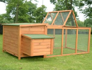 Best Chicken Coops for 4 Chickens 2019: PawHut Deluxe