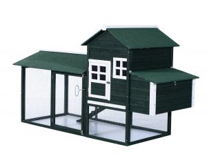 Chicken coop for 4 chickens: Best Reviews Chicken Coops