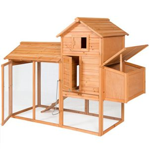 Best Chicken Coops for 4 Chickens 2019: Best Choice Products