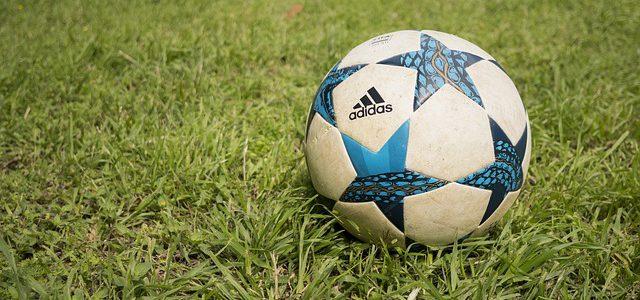 Best Soccer Goals For The Backyard