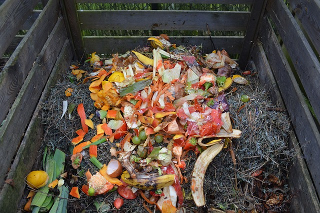 What Can I Put In My Compost Bin? 79 Things You Can Compost
