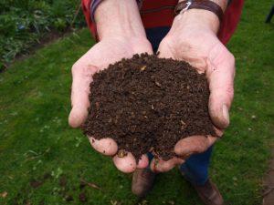 organic compost soil